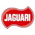 JAGUARI (4)