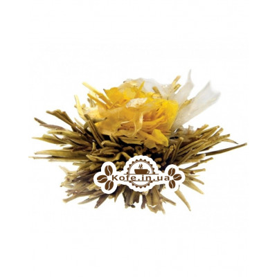 Крила Метелики зелений в'язаний чай Чайна Країна