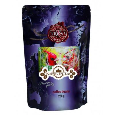 Кофе Trevi Арабика Коста Рика зерновой 250 г (4820140050774)