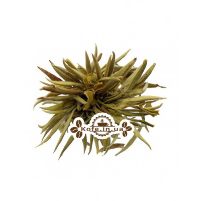 Срібна Полуниця зелений в'язаний чай Світ чаю