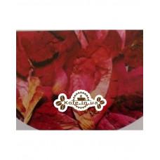 Лепестки Розы Чайна Країна